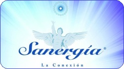 Sanergía Logo - WEB